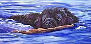 Newfoundland Art Paintings - Newfoundland Dog Water Trials by Mary Jo  Zorad