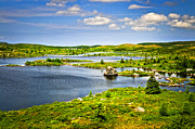 Panoramic Art - Newfoundland landscape by Elena Elisseeva