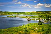 Newfoundland Landscape Print by Elena Elisseeva