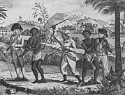 Slavery Ship Prints - Newly Arrived African Captives Print by Everett