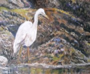 Waterfowl Paintings - NEWPORT RHODE ISLAND   Egret Hunting by Nancy Custin