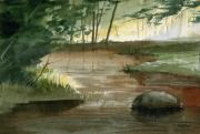Trout Painting Originals - Newton Creek 1 by Sean Seal