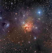 Molecular Clouds Prints - Ngc 1579, The Northern Trifid Nebula Print by Don Goldman