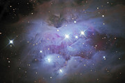 Sparkling Prints - Ngc 1977, An Emission Nebula In Orion Print by Don Goldman