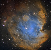 Molecular Clouds Prints - Ngc 2174, Monkey Head Nebula Print by Don Goldman