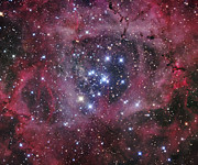 Molecular Clouds Prints - Ngc 2244, The Open Cluster Print by Robert Gendler