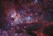 Star Clusters Posters - Ngc 3372, The Eta Carinae Nebula Poster by Robert Gendler