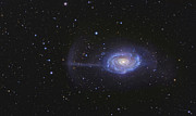 Tidal Forces Prints - Ngc 4651, The Umbrella Galaxy Print by R Jay GaBany