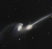 Merge Prints - Ngc 4676, Also Known As The Mice Print by Stocktrek Images