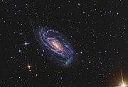 Sparkling Prints - Ngc 5033, A Spiral Galaxy Situated Print by R Jay GaBany