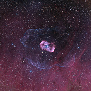 Bipolar Photo Posters - Ngc 6164, A Bipolar Nebula Poster by Don Goldman