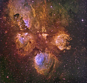 Starfield Posters - Ngc 6334, The Cats Paw Nebula Poster by Don Goldman