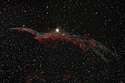 Witches Broom Posters - Ngc 6960, The Western Veil Nebula Poster by Rolf Geissinger