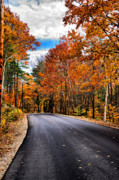 Nh Framed Prints - NH Autumn Road 1 Framed Print by Edward Myers