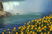 Horseshoe Falls Framed Prints - Niagara Falls in Spring Framed Print by Charline Xia