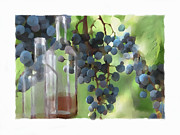 Wine Grapes Prints - Niagara Peninsula Wine Country Print by Bob Salo
