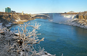 Rainbow Bridge - Tokyo Posters - Niagara Winter Poster by Charline Xia