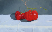 Tomato Paintings - Nice stem by John Holdway