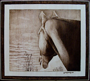 Shadows Pyrography Framed Prints - Nickis Sunset Framed Print by Jo Schwartz
