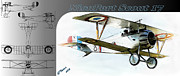 Fighter Framed Prints - Nieuport Scout 17 Framed Print by Arne Hansen