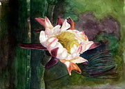 Blooming Paintings - Night Blooming Cereus by Sharon Mick