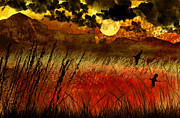 Dramatic Digital Art - Night Falls Over The Land by Ellen Lacey