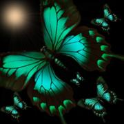Butterfly Digital Art Posters - Night Flight to the Moon Poster by Garry Staranchuk