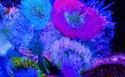 Night Flowers Print by Anne-Elizabeth Whiteway