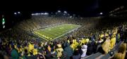 Oregon Ducks Prints - Night Game at Autzen Stadium Print by Alasdair Turner