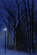 Winter Night Posters - Night Lights Poster by Ron Jones