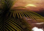 Tropical Sunset Digital Art Prints - Night Moves Print by Richard Rizzo