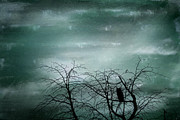 Bird On Tree Metal Prints - Night Owl Metal Print by Georgia Fowler