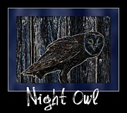 Barn Owls Framed Prints - Night Owl Poster - Digital Art Framed Print by Carol Groenen