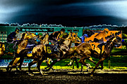 Horserace Posters - Night Racing Poster by David Patterson