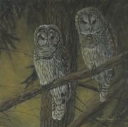 Patricia Mansell - Night Watch - Barred Owls