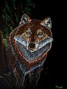 Wolf Drawings Framed Prints - Night Wolf Framed Print by Nick Gustafson