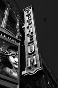 Old Theater Framed Prints - Nightfall at The Orpheum - San Francisco California - 5D17991 - Black and White Framed Print by Wingsdomain Art and Photography