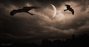 Bird Prints Art - Nightly Flight by Lourry Legarde