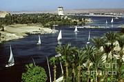 Boats Photos - Nile And Oberoi Hotel, Egypt by Bernard Wolff