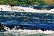 Patricia Taylor - Nile River Headwaters in Uganda