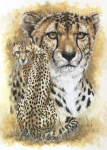 Cheetah Mixed Media Framed Prints - Nimble Framed Print by Barbara Keith