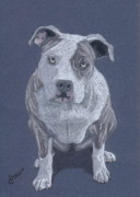 Colored Pencil Metal Prints - Nina Bella Metal Print by Stacey Jasmin