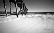 In The Sun Prints - NJ shore in black and white Print by Paul Ward