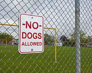 Soccer Field Framed Prints - No Dogs Allowed Sign Framed Print by Thom Gourley/Flatbread Images, LLC