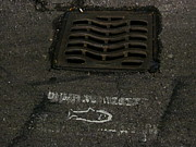 Grate Photos - No Fishing by Guy Ricketts