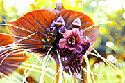 Realistic Photo Prints - No Name Orchid Print by Susanne Van Hulst