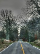 Rural Road Prints - No passing on the right Print by David Bearden