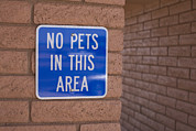 Stop Sign Photos - No Pet Sign At Rest Stop by John Burcham
