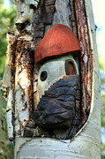 Found Wood Sculptures - No Place like Gnome Home IV by Eric Knowlton