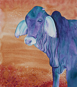 Brahma Bull Framed Prints - No Starch Added aka Eeyore Framed Print by Tracy L Teeter